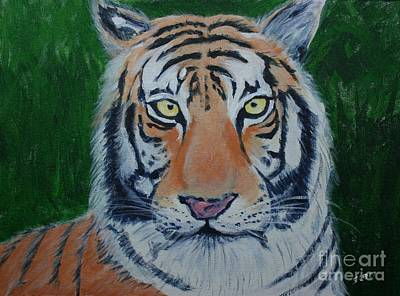 Painting - Bengal Tiger by Stacy C Bottoms