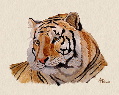 Detroit Tigers Art Painting - Bengal Tiger Watercolor by Angeles M Pomata