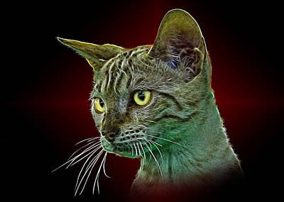 Portraits Of Pets Mixed Media - Bengalese Cat by Denis Bajan