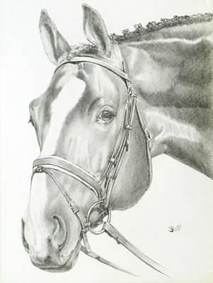 Barnyard Drawing - Benign by Barbara Keith