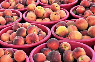 Photograph - Bennetts Orchards Peaches by Kim Bemis