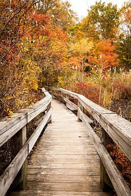 Nys Photograph - Bent Bridge by Alexander Mendoza
