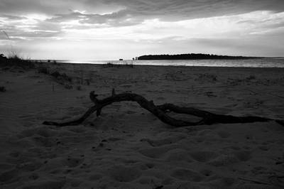 Photograph - Bent Driftwood  by Laurie Pike