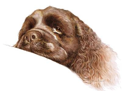 Cocker Spaniel Digital Art - Bentley by Laurie Musser