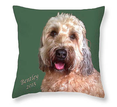 Painting - Bentley Pillow by Karen Zuk Rosenblatt