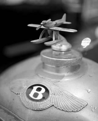 Photograph - Bentley by Robert Phelan