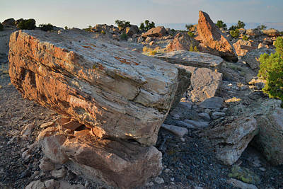 Photograph - Bentonite Site Boulders - Little Park Road by Ray Mathis