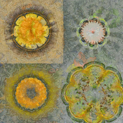 Benzoyl Proportion Flowers  Id 16164-224905-80460 Art Print by S Lurk