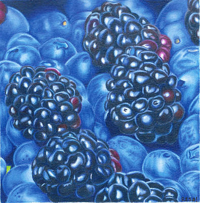 Blueberry Drawing - Berries by Resa Salazar