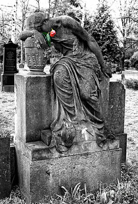 Photograph - Berlin Flower For The Dead by John Rizzuto