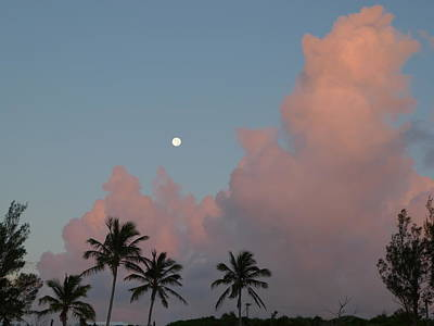 Photograph - Bermuda Morning Moon by Richard Reeve
