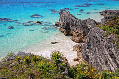 Photograph - Bermuda Coral Reef Sea And Outcrops by Charline Xia