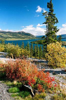 Photograph - Bernard Lake by Frank Townsley