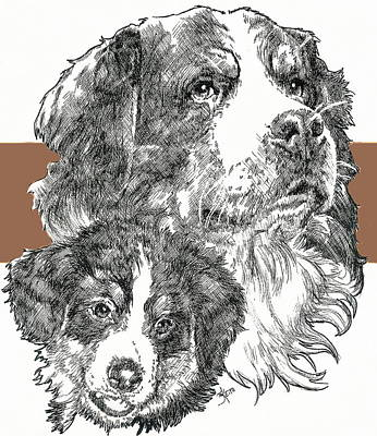 Mixed Media - Bernese Mountain Dog And Pup by Barbara Keith
