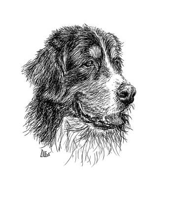 Digital Art - Bernese Mountain Dog @indiobernes by ZileArt