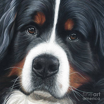 Painting - Up Close by Donna Mulley