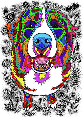 Drawing - Bernese Mountain Dog by ZileArt
