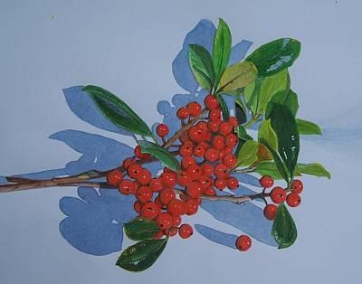 Berries Art Print by Constance Drescher