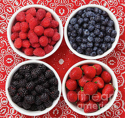 Photograph - Berries by Greg  West