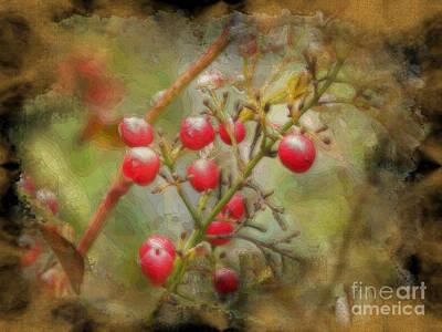 Nature Digital Art - Berries  by Sue Gardiner