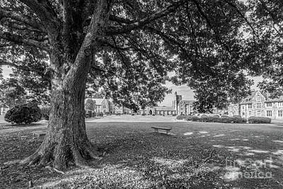 Berry College Photograph - Berry College Landscape by University Icons