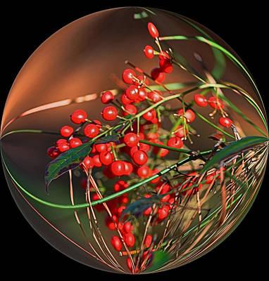 Manip Photograph - Berry Globe by Russ Mullen