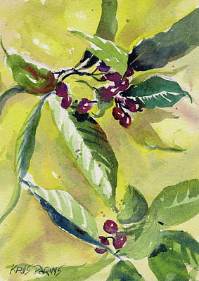 Painting - Berry Study by Kris Parins