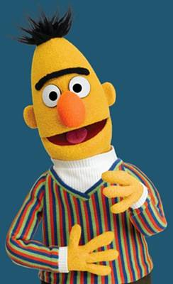 Photograph - Bert by Sesame Street