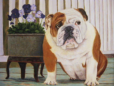 Bulldog Oil Painting - Bertie by Jenae Gaebel