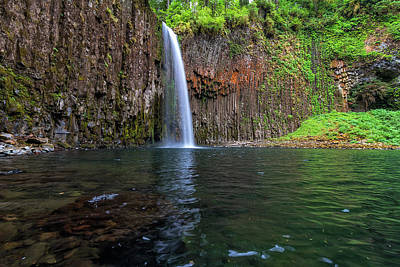 Photograph - Beside Abiqua Falls In Summer by David Gn