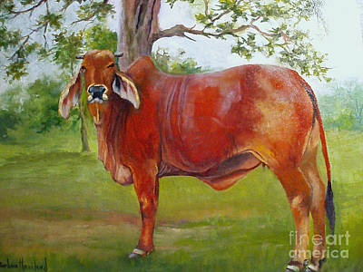 Painting - Bessie The Brahama by Barbara Haviland