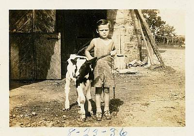 Photograph - Bessie The Calf Circa 1936 by JAMART Photography