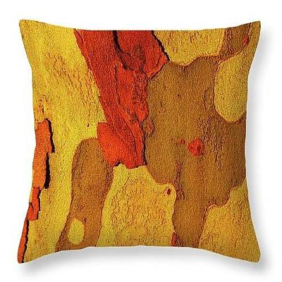 Photograph - Best Tree Bark Throw Pillows by Lexa Harpell