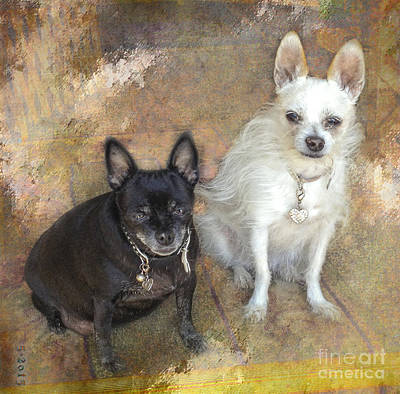 Digital Art - Best Buddies by Rhonda Strickland