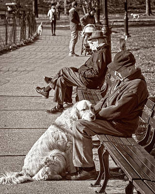 Photograph - Best Friends by Alan Raasch