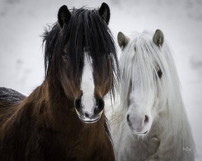 Animals Photos - Best Friends II by Everet Regal