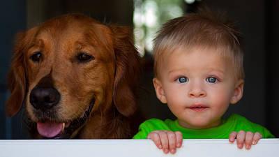 Golden Retriever Photograph - Best Friends by Matt Dobson