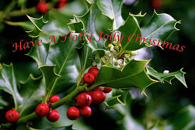 Photograph - Best Of Holidays Have A Holly Jolly Christmas by Wes and Dotty Weber