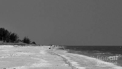 Photograph - Best Of Sanibel by Frank Williams