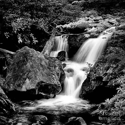 Best Of The Smokies Art Print by Paul W Faust -  Impressions of Light