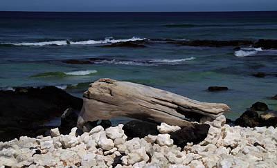 Mixed Media - Best Seat At The Beach by Pamela Walton