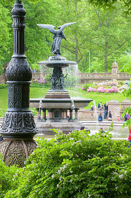 Photograph - Bethesda Fountain by Dennis Ludlow