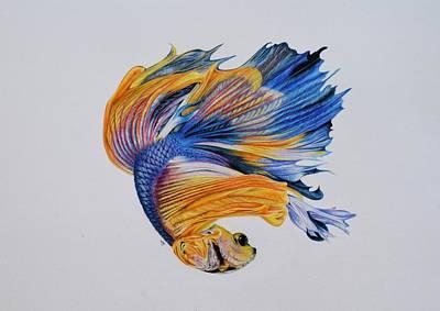 Betta Fish 3 Art Print by Biophilic Art