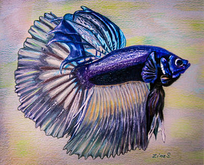 Betta Fish Art Print by Zina Stromberg