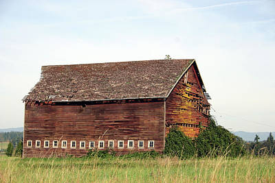 Photograph - Better Days Barn by Craig Strand