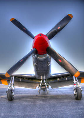 Photograph - Betty Jane by John King