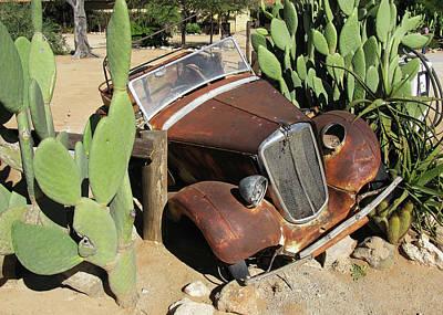 Photograph - Between A Cactus And A Desert Place by Doug Matthews