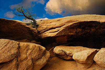 Photograph - Between A Rock And A Hard Place by Harry Spitz