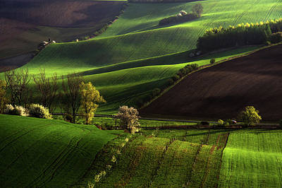 Moravia Photograph - Between Green Waves by Jenny Rainbow