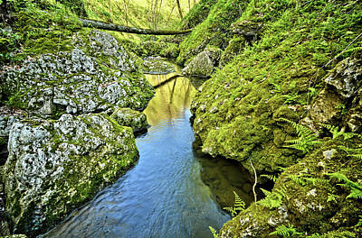 Photograph - Between Limestone by Bonfire Photography